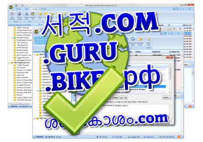 Domain Name Software for Windows